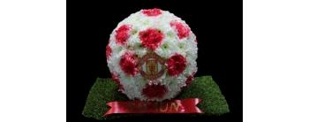 3D Manchester United Football tribute